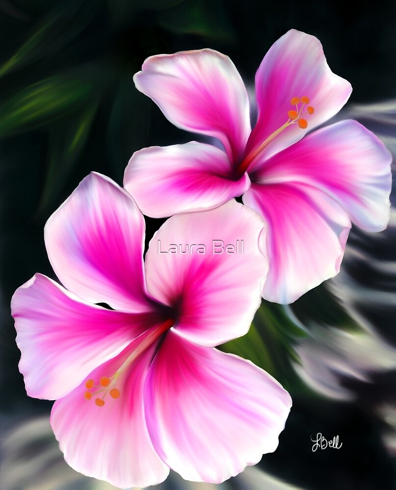 Bright Pink Hibiscus Flowers By Laura Bell Redbubble