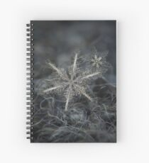 Stars in my pocket like grains of sand - grey version Spiral Notebook