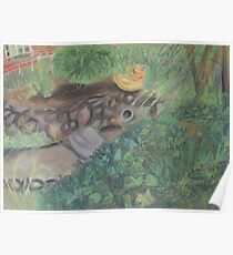 Landscape with Rubber Ducky Poster