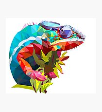 Low Poly Chameleon Photographic Print