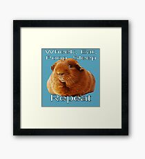 Wheek Eat Poop Sleep Repeat Framed Print