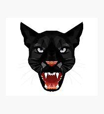 Katze Leopard Puma / Panther Gesicht Photographic Print