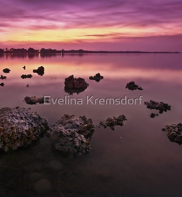 Edge Of A New Day by Evelina Kremsdorf