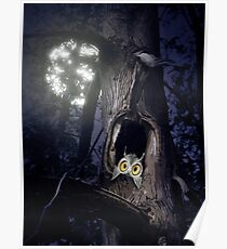 Cute baby owl in tree hole at night art photo print Poster