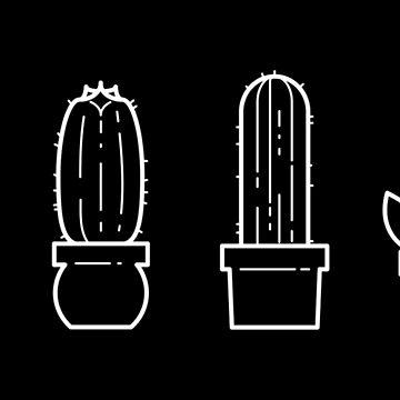 Minimalist Cacti II by ashraae