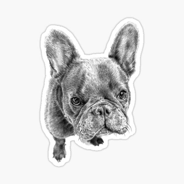 Lailah the French Bulldog Sticker