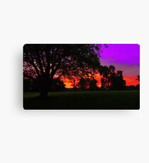 Dark Maple Canvas Print