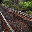 Rack and pinion by Peter Daalder