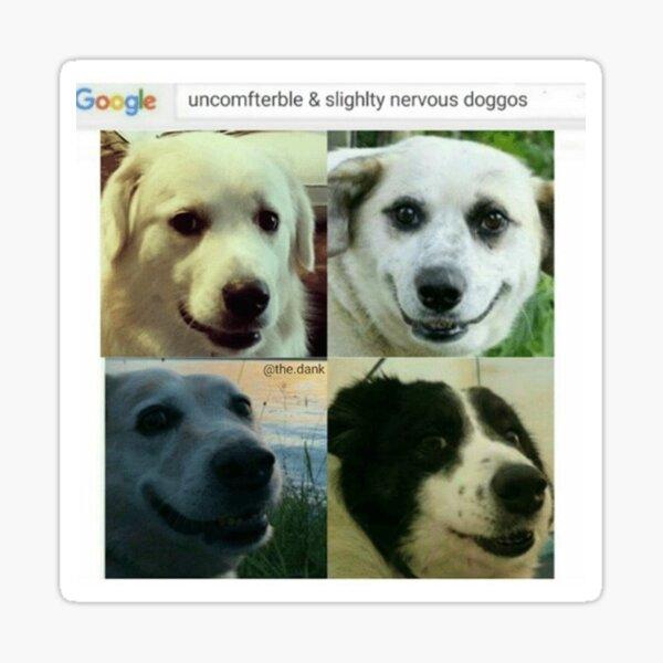 Uncomfterble & Slightly Nervous Doggos Sticker