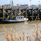 Antwerp - De Parel by Gilberte