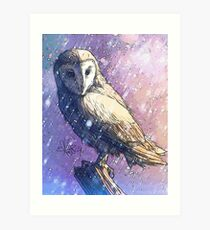 Owl - Showers Art Print