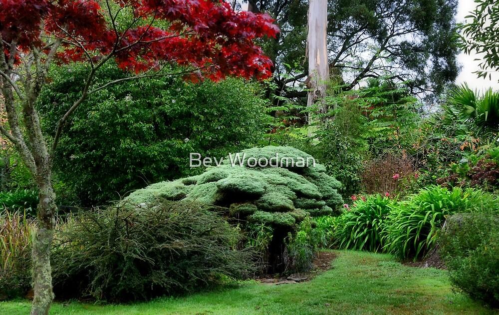Wildenstein Japanese Garden - Mt Wilson NSW by Bev Woodman