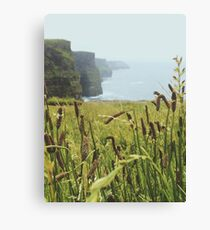 Moher Cliffs Canvas Print