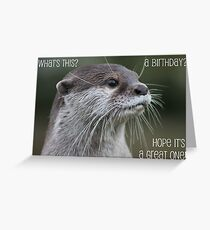 Otter birthday card Greeting Card