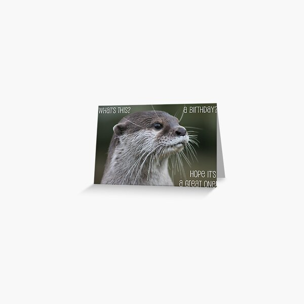 Otter birthday card Greeting Card