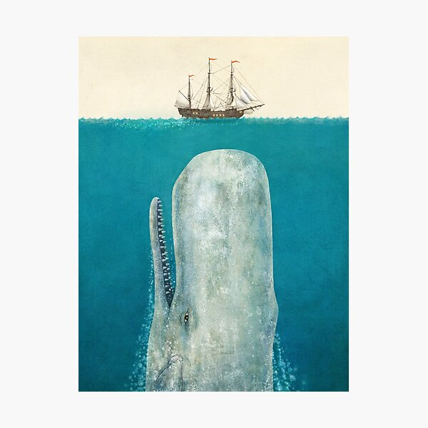 The Whale (Option) Photographic Print