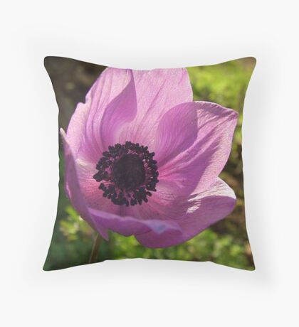 One Delicate Purple Anemone Coronaria Flower Throw Pillow