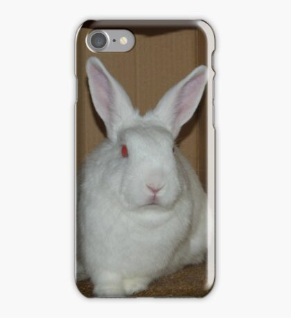 Bart in his box - aka Demon Bunny iPhone Case/Skin