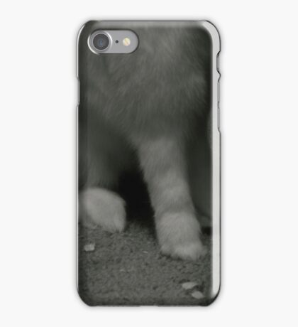 Lucky Rabbits Feet iPhone Case/Skin