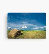 Under Prairie Skies Canvas Print