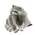 Cute Racoon by DominicWhiteArt