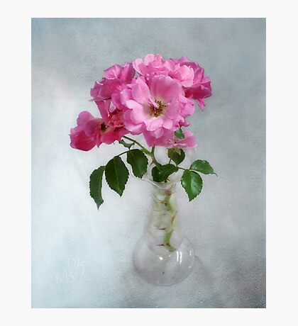 Deep Pink Roses in a Clear Glass Vase Photographic Print