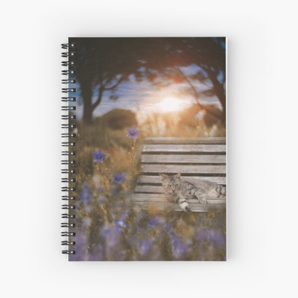 Dusk Spiral Notebook