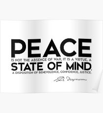 peace is a virtue, a state of mind - spinoza Poster
