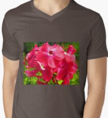 Vivid Pink Phlox Mens V-Neck T-Shirt