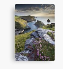 Cornwall : Boscastle Harbour Canvas Print