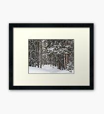 Woods in Winter Framed Print
