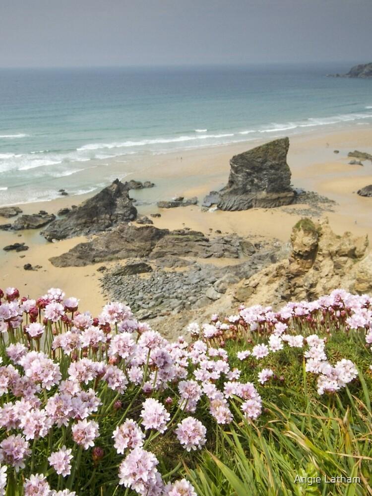 Cornwall - Bedruthan Steps by AngelaBarnett