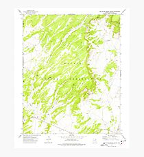 USGS TOPO Map Arizona AZ Big Willow Spring Canyon 314132 1972 24000 Photographic Print