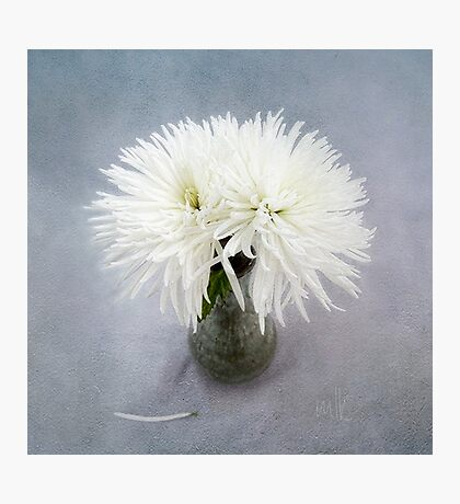 Fancy White Mums in a Green Vase Photographic Print