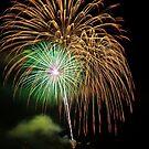 Fireworks 0004 by Tony  Bazidlo