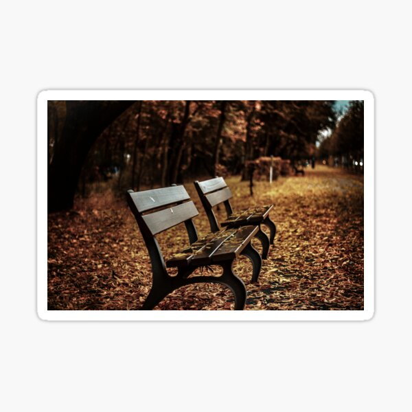 Benches on the park Sticker