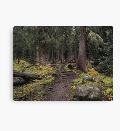 The High Forest Canvas Print