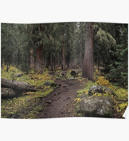 The High Forest Poster