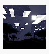 Minecraft Nightscape Photographic Print