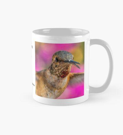 Hummingbird Mugshot Mug #2 Mug
