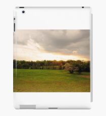 Shiloh Battlefield-33320 iPad Case/Skin