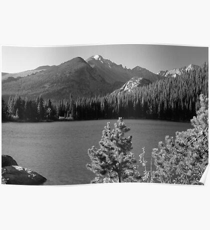 Bear Lake Monochrome Poster