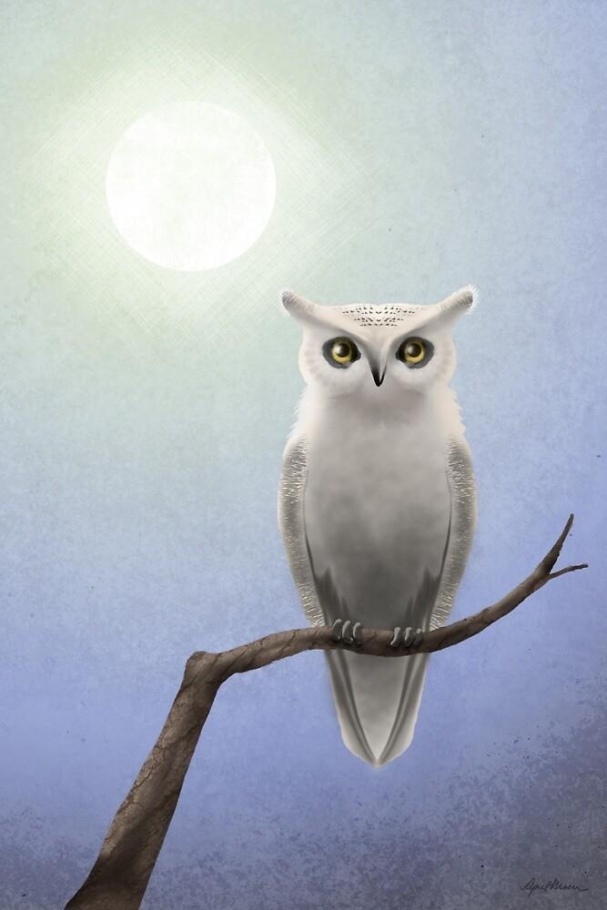White Owl by April  Moen