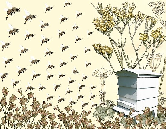 Bees to the Hive by historicnature