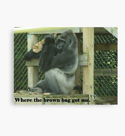 Where the brown bag got me. Canvas Print