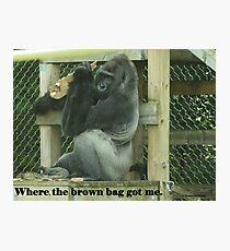 Where the brown bag got me. Photographic Print