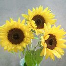 Three Bright Sunflowers Still Life by LouiseK