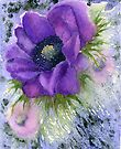 Anemone (Original painting sold) by Jacki Stokes