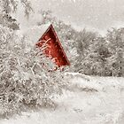 Red Shed In The Snow by Lois  Bryan