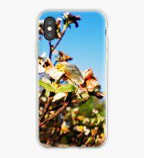 Shiloh Battlefield-227888 iPhone Case